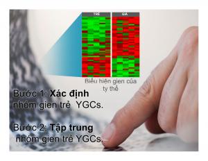 Công nghệ gien ageLOC đem lợi ích gì cho sức khỏe chúng ta?