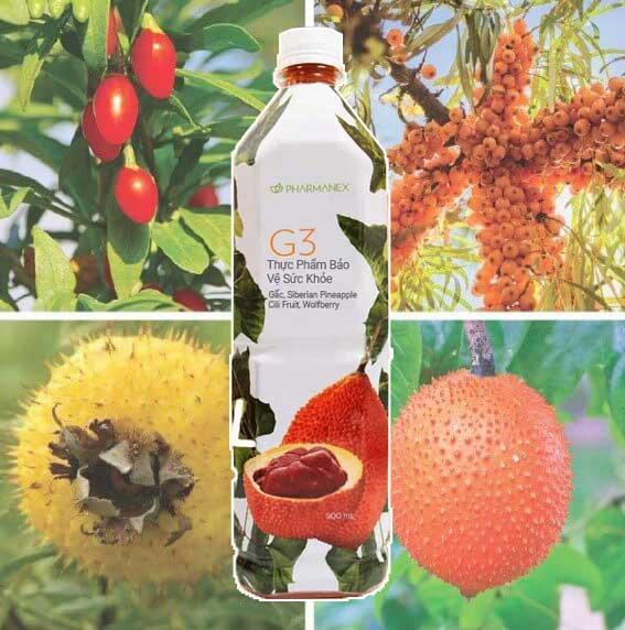 Nước trái cây g3